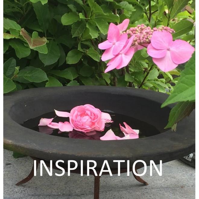 Inspiration-web