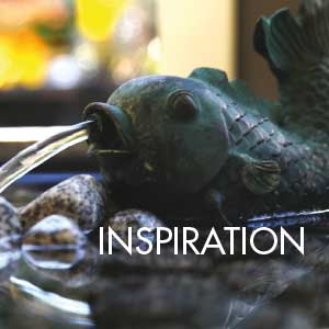 inspiration_webb