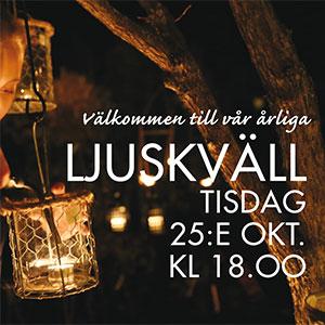 ljuskvall2016_webb